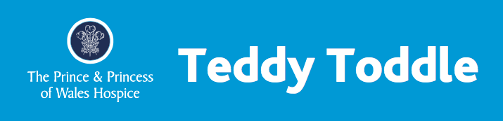 Teddy Toddle PPWH